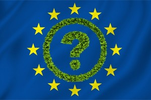 Brexit: Another hokey cokey dance for green business?