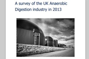 A survey of the UK Anaerobic Digestion industry in 2013 - edie.net