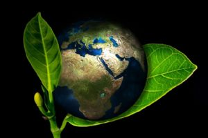 The ultimate environmental safety strategy