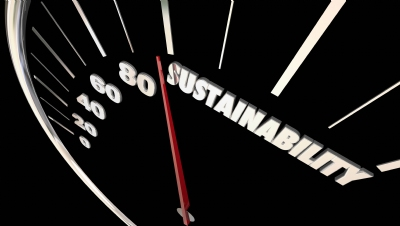 Moving the sustainability agenda forward: 5 key steps for business