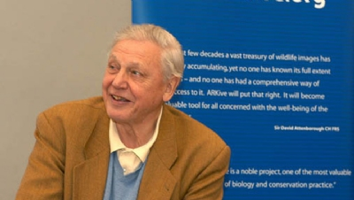 Climate change: Are businesses ready for the 'Attenborough effect' part two?