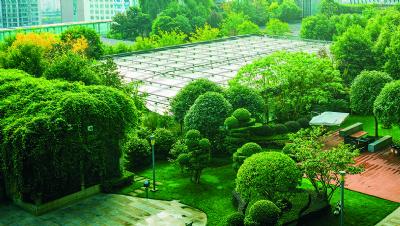 Environmental net gain: An enduring development concept for resilient legacies