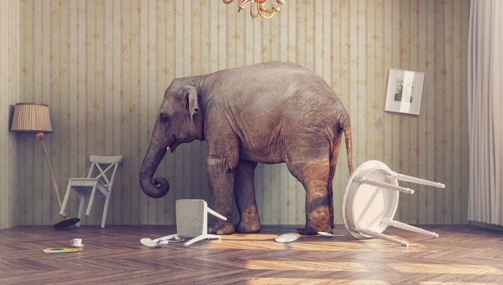 The Elephant in the Room - Waterscan