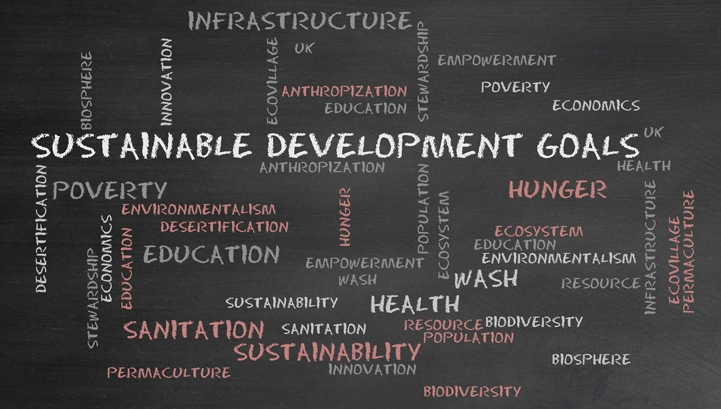 Why the SDGs are a big thing for SMEs