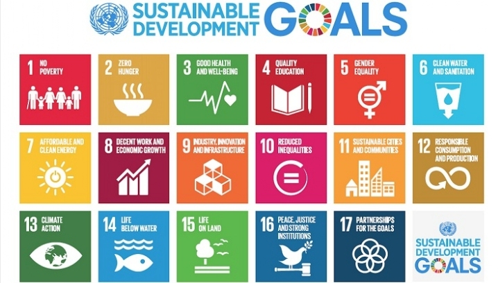 The Sustainable Development Goals - a call to action for all