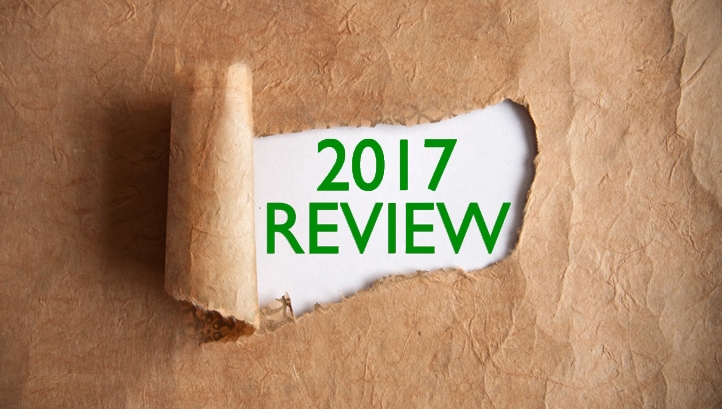 2017 green policy review: A year of progress and pleasant surprises