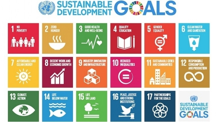 Working towards the SDGs through political and economic flux: Three recommendations for business