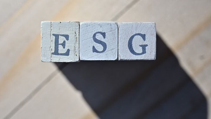 Three themes shaping the ESG landscape in 2021