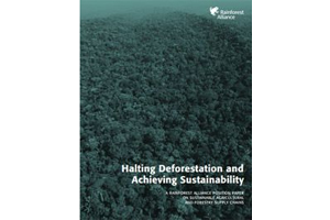 Halting Deforestation and Achieving Sustainability - edie.net