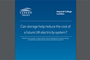 Can storage help reduce the cost of a future UK electricity system? - edie.net