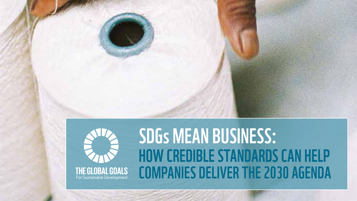SDGs mean business: How credible standards can help companies deliver the 2030 Agenda - edie.net