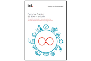 Executive Briefing: BS 8001 - a Guide - edie.net