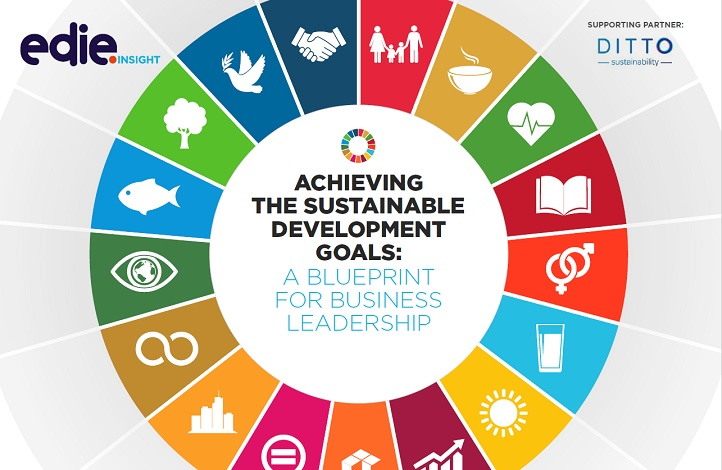 Achieving the Sustainable Development Goals: A Blueprint for Business Leadership - edie.net