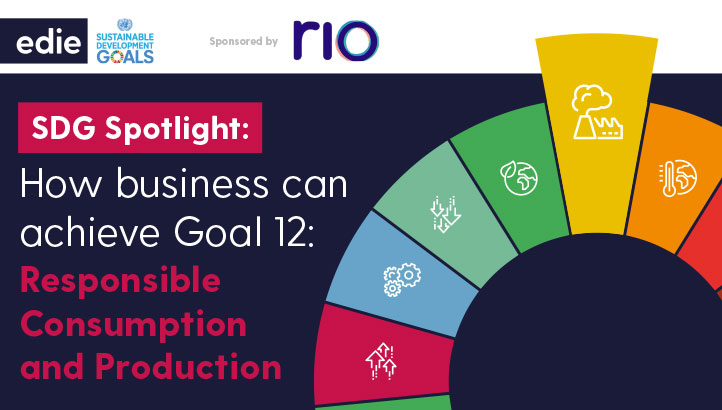 SDG Spotlight: How Businesses Can Achieve Goal 12; Responsible Production and Consumption - edie.net