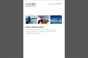Low carbon jobs: The evidence for net job creation from policy support for energy efficiency and renewable energy - edie.net
