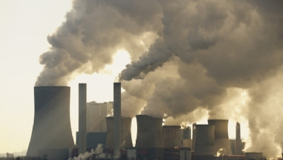 WWF is calling on the Government to introduce a net-zero economic test that ensures that government spending and taxation is aligned towards the 2050 target