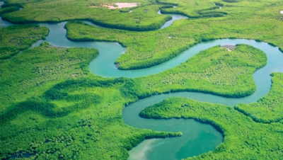 According toprevious WEF research, $44trn – more than half of global GDP – is exposed to risks from nature loss. Image: WEF