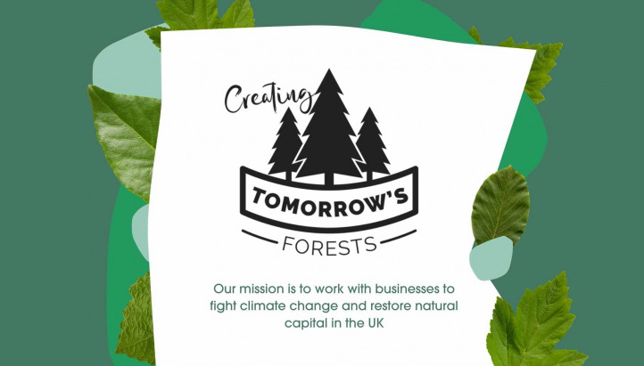 Creating Tomorrow's Forests - What We Do