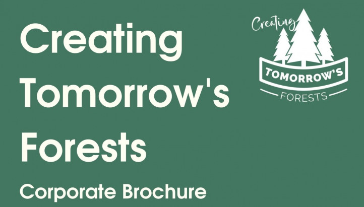 Creating Tomorrow's Forests Corporate Brochure