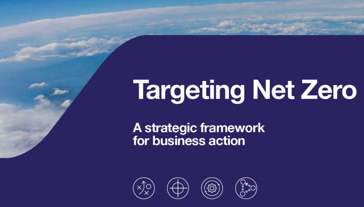 Targeting Net Zero: A strategic framework for business action