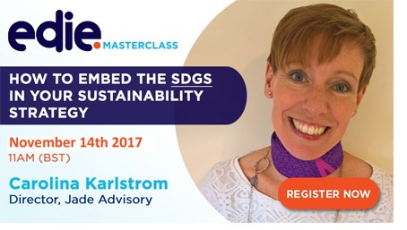 30-minute masterclass: How to embed the SDGs in your sustainability strategy