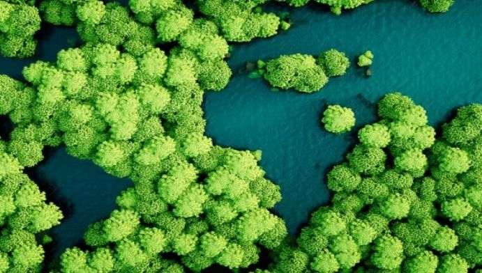 Emerging trends shaping the future of sustainability